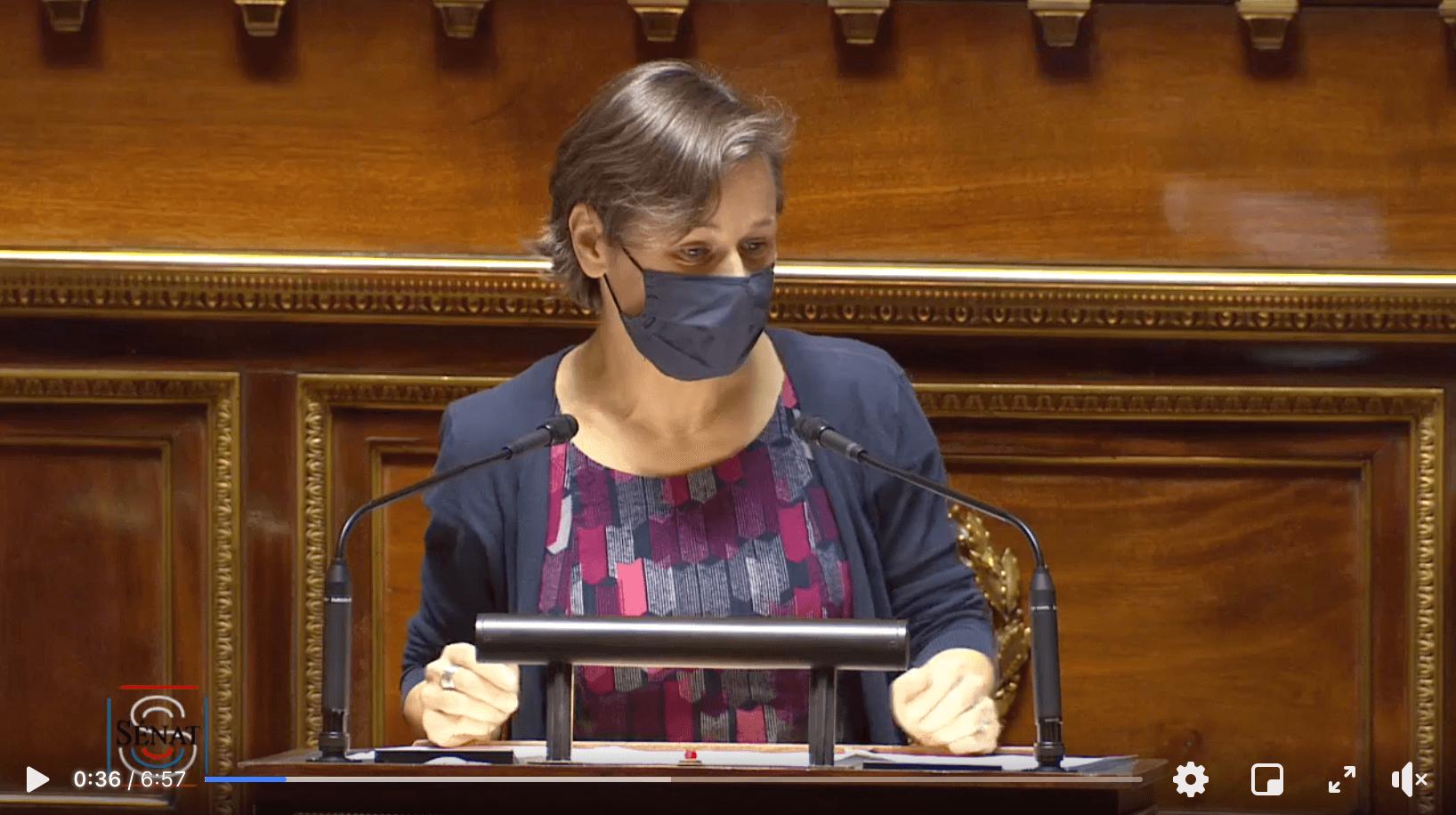 Visuel «Le groupe Ecologiste – Solidarité et Territoires votera contre le budget du gouvernement pour l'année 2021» Sophie Taillé-Polian